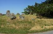 Langdyssen med dens to gravkamre ligger helt ud til Knudsskovvej. Her set fra sydvest.