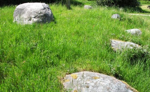Langdyssen set fra nordøst med væltede randsten omkring dækstenen over gravkammeret.