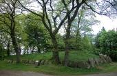 Kongehøjen er en af Danmarks flotteste storstensgrave fra bondestenalderen. To gravkamre er bevaret i den store høj.