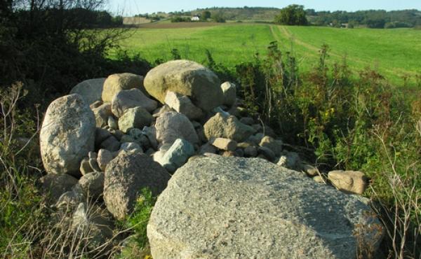 Store sten i markskellet nord for langdyssen stammer måske fra den sløjfede runddysse.