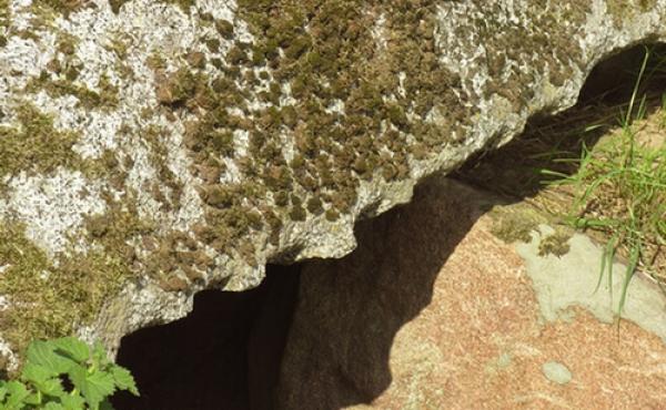 Stenhuggerspor i kant af dæk- stenen over den indre del af kammergangen.