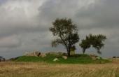 Lundby-jættestuen i kanten af marken ud til offentlig vej set fra syd.