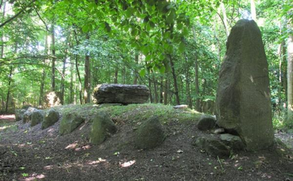 Marienborg langdyssen i skoven nord for Marienborg Gods. Her set fra vest med den ejendommelige store bautasten i højens sydvestlige ende.