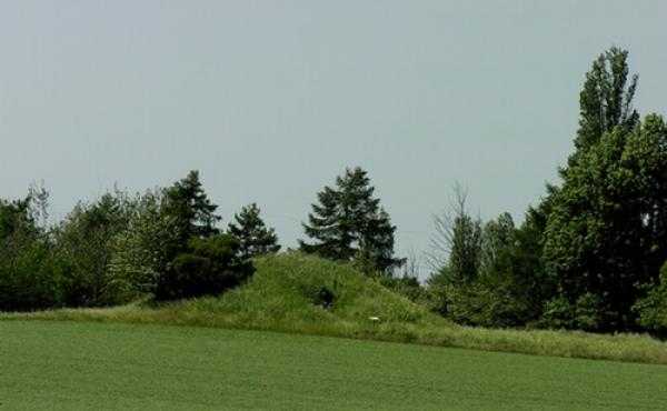 Jættestuen ligger i vestkanten af marken. En trampesti i markskellet fører frem til højen. Her set fra øst.