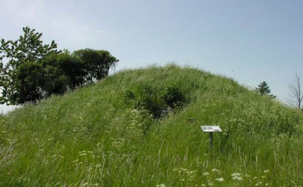 Milehøj jættestuen set fra øst. Hullet i højsiden er indgangen til den smalle kammergang.
