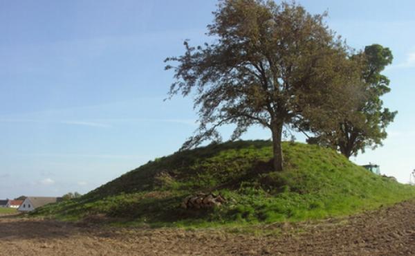 Nr. Frenderup-jættestuen set fra nordøst.