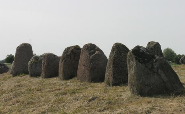 Rynkebjerg-langdysse-08