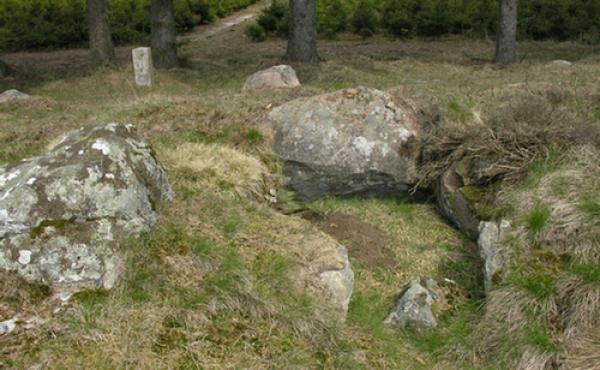 Stensbjerggaard-langdysse-07